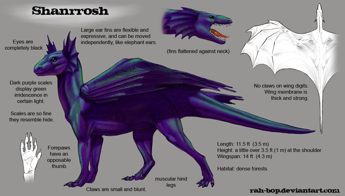 Shanrrosh refsheet by rah-bop