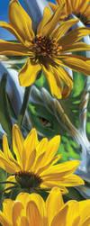 Look Like the Innocent Flower by rah-bop