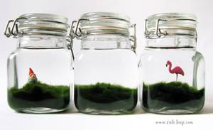 Lawn in a Jar