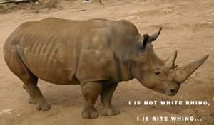 Rite Whino by Pristichampsus