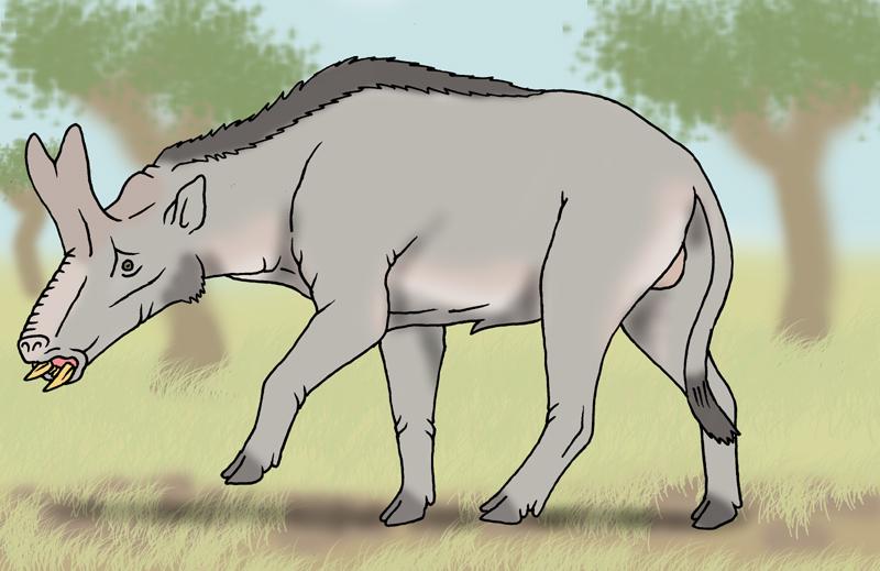 Neocene - Brontothere Hornhog