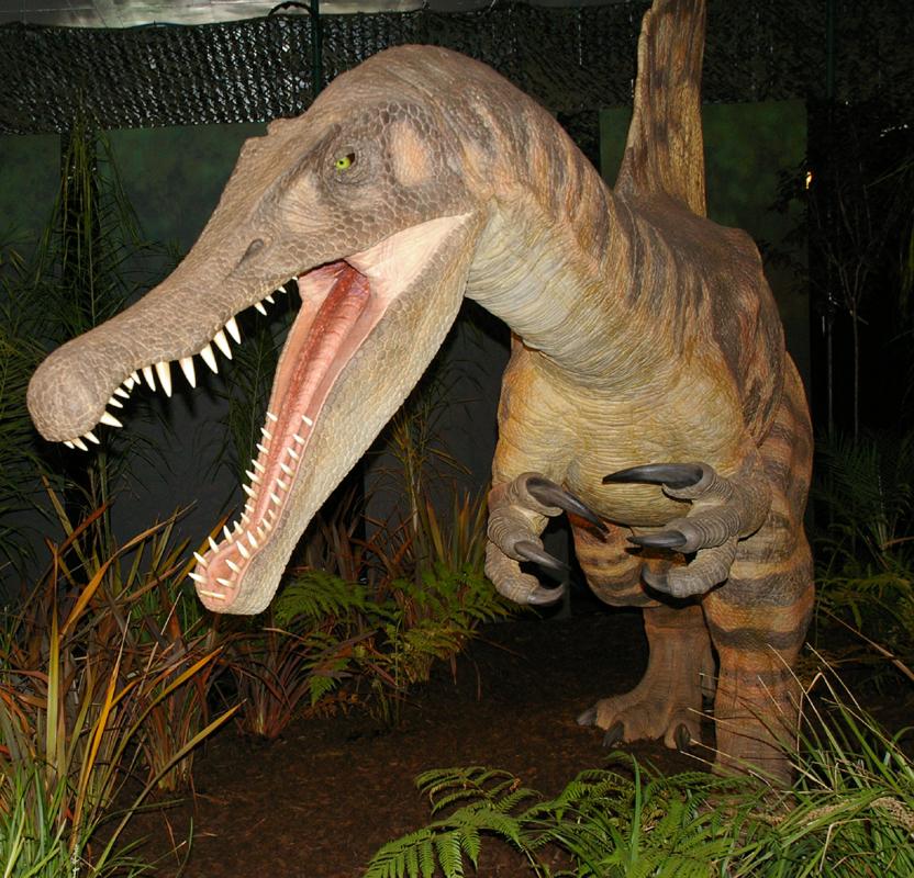 Dinosauria 5 by Pristichampsus