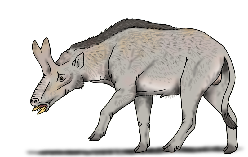 Brontothere Hornhog by Pristichampsus on DeviantArt