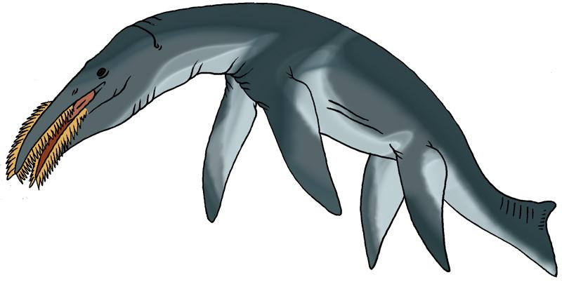 Filter-feeding Pliosaur by Pristichampsus