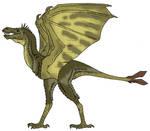 BBFT - Dracornis