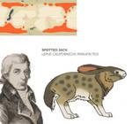 Nea Contest - Spotted Jack by Pristichampsus