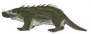 Mythic Bestiary - Peluda