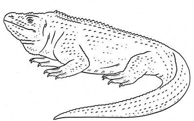 Prehistoric Monsters - Iguana by Pristichampsus