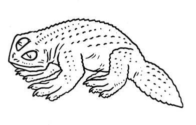 Beneath Skull Island - Speosaura