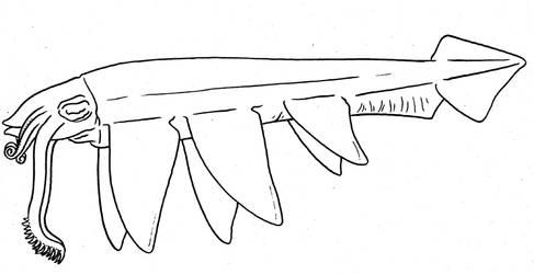 Cephtember - Dragon-Squid