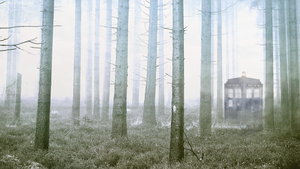 TARDIS Landing on a Foggy Morning