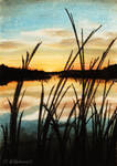 Marsh Sunset - Speedpaint