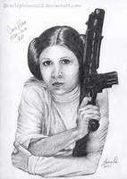Princess Leia by Wildphoenix22