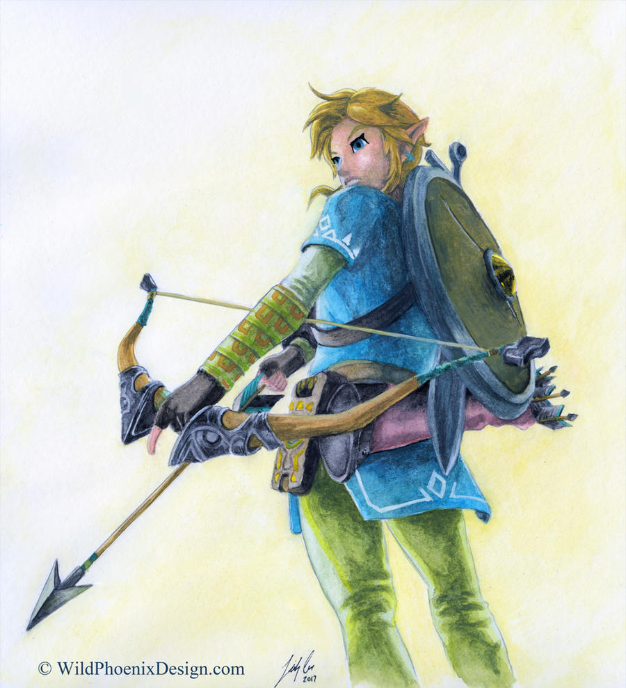 Link of the Wild