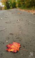 Leaf Rd