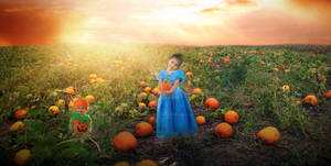 Cutest pumpkins in the patch by RebeccaDillahay