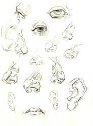 Sketch 2 by nilsvansante