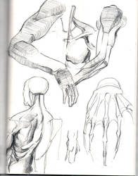 Sketches 1 by nilsvansante