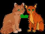 All Warrior Cats Challenge #1Firestar