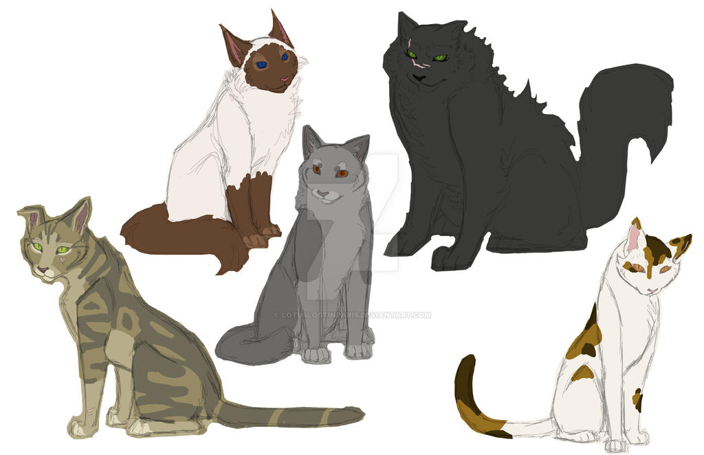 Warrior Cat Names For Brown Tom