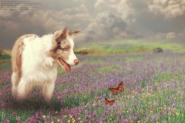 The Joys of Spring by Vesperity