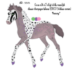 5515 Padro Foal Design by Vesperity