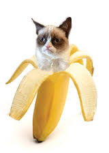 Grumpy Cat Bananya by Harmonizelives
