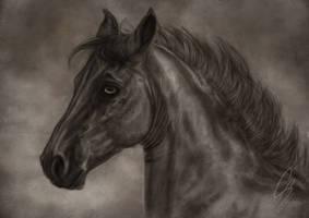 Twilight trade by blackseagull