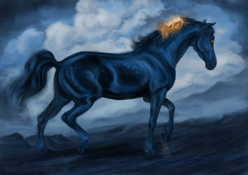 Blue by blackseagull