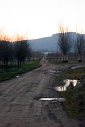 A Wet Dirt Road by Wilhelmina-vanRoyen