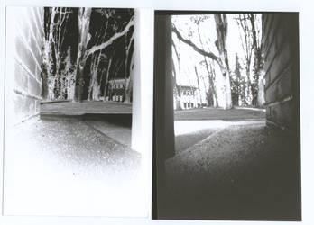 Pinhole Negative and Developed by Wilhelmina-vanRoyen
