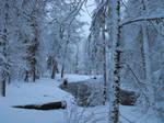 Winter87