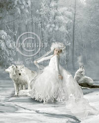 Dance with the wolves by CindysArt