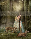 Princess II