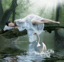 Swan dans by CindysArt