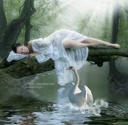 Swan dans