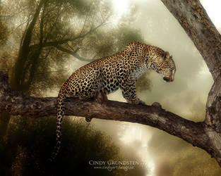 Leopard by CindysArt