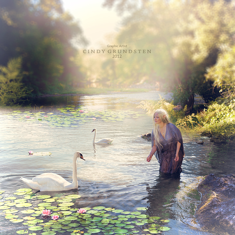 The Swan and the Fairy by CindysArt