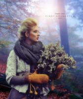 Beautiful autumn by CindysArt