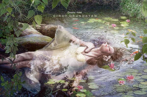 Ponds beauty by CindysArt