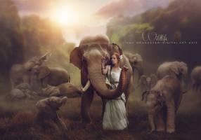 Wildlife by CindysArt