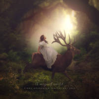 A magical world by CindysArt