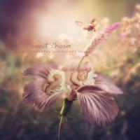 Sweet dream by CindysArt