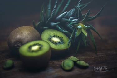 Kiwi by CindysArt