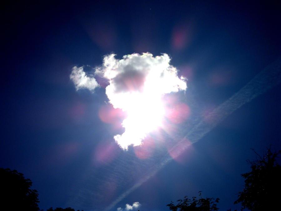 Flower of light by forvintri
