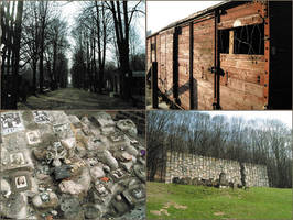 Poland Moments. by Elphaba-Skellington