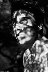shadows by Loochi