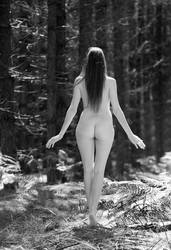 Woodland Beauty 2 by MTL3