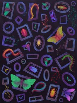 Bugs - Pattern