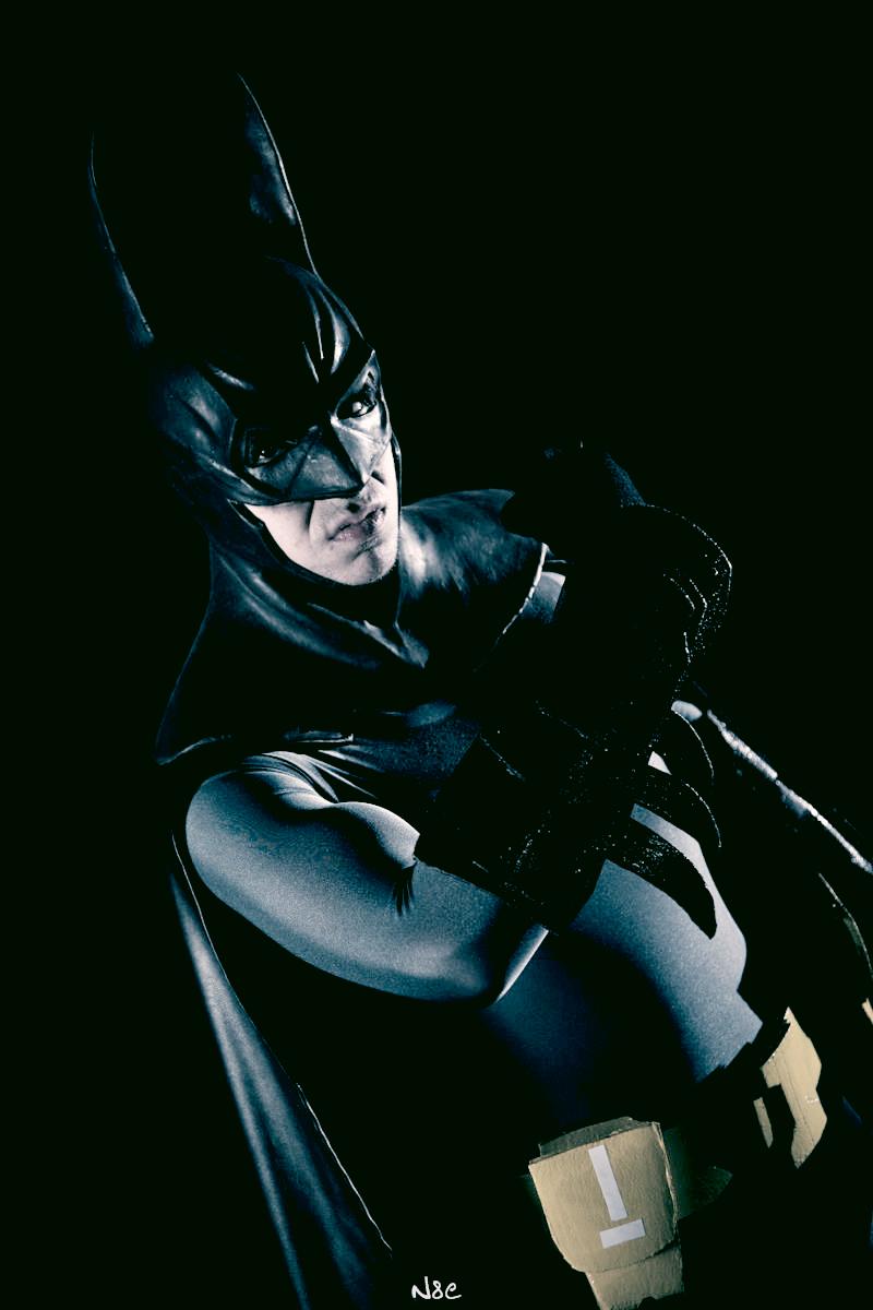 Batman - Dark Knight of Gotham by Snakethoot